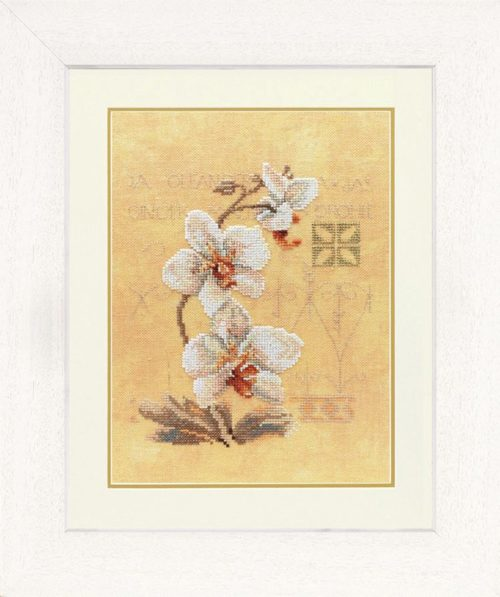 Lanarte 0008008 (34746) / 3 орхидеи